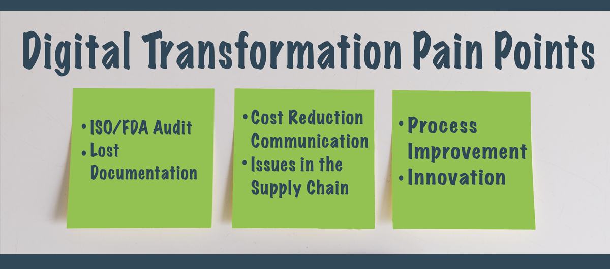 Digital Transformation Pain Points